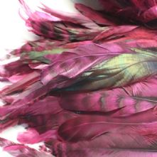Chinchilla Full Coque Magenta Pink Feathers 14-18cm Long x 5cm